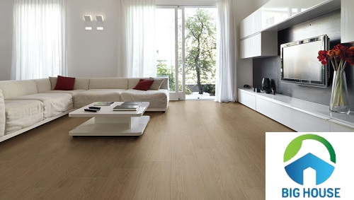 gạch giả gỗ viglacera 1